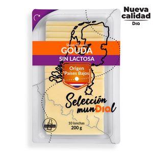 DIA SELECCIÓN MUNDIAL queso gouda holandés sin lactosa en lonchas sobre 200 gr