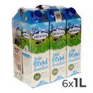 ASTURIANA leche semidesnatada envase 1 lt PACK 6